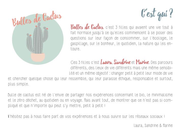 presentation-blog-bulles-de-cactus