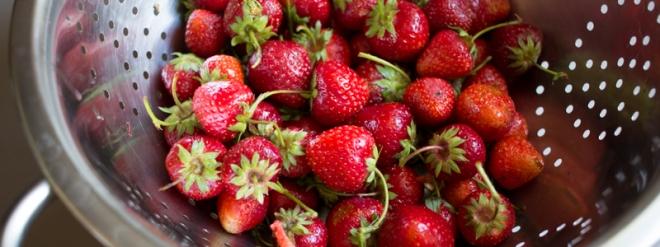 fraise 1 (1 sur 1)