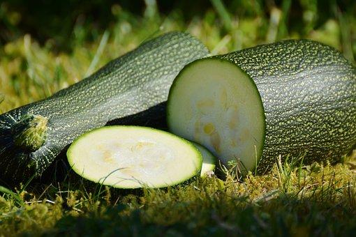 zucchini-1659094__340